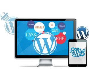 Kursus wordpress development